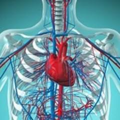 Nova tomografia para o coração