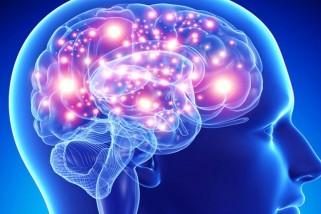 Mitos e verdades sobre epilepsia.