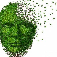 Demência pode ser evitada se acontecer o controle de doenças crônicas