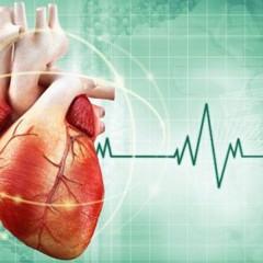 Cardiologia e seus tratamentos