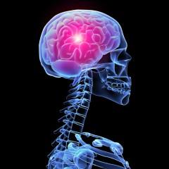 Neurologia | O que é a neurologia?