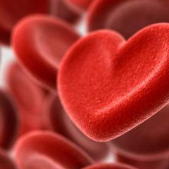 Doação de sangue 2017 | Campanha de doação de sangue envolve celebridades