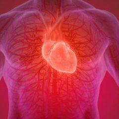 Curativo é criado para sequelas de corações infartados