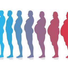 Em 2045 um quarto da população mundial será obesa