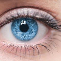A visão e seus mitos e verdades