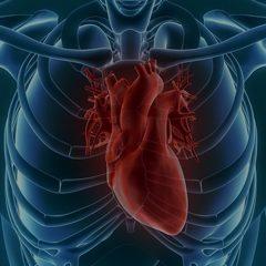 Risco de doenças do coração
