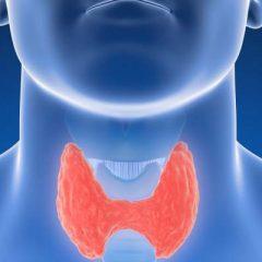 Variações na tireoide oferecem perigo ao coração